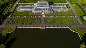 palm house kew