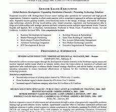 executive resume tips picturesque executive resume tips sales resume job