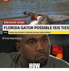 Funny Florida Gator Memes - live breaking news florida gator possible isis ties 1701 h homeland