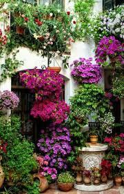 Flowering Patio Plants 51 Best Patio Andaluz Images On Pinterest Patios Cordoba Spain