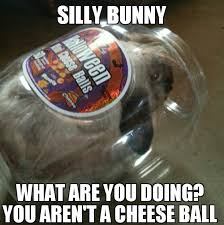 Silly Rabbit Meme - silly rabbit cheeseballs are for kids meme by youwishyouknew1421