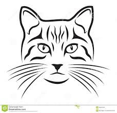 coloring page attractive kitten face drawing 9zd how to draw a