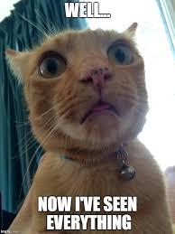 Shocked Face Meme - shock meme 28 images shocked batman memes quickmeme brushes