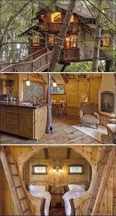 best tree houses 822 best tree houses images on pinterest treehouses