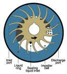 Water Ring Vaccum Pump Wintek How A Liquid Ring Vacuum Pump Works