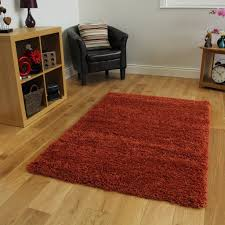 Area Rug Mat Rugs Terracotta Orange Luxury Shaggy Shag Area Rug Mat Design
