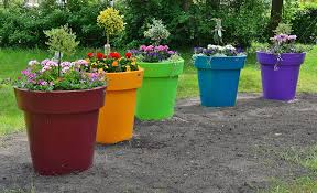 Flower Pots - free photo flower pots large park deco free image on pixabay