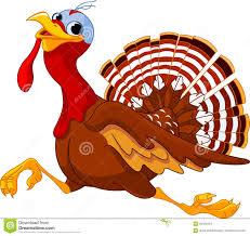 animated thanksgiving clipart running cartoon turkey stock images image 33493454