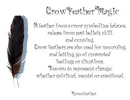 the meaning of crow showing up we are one spirit guides