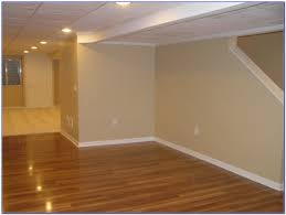 unusual ideas design best basement paint color for with no windows