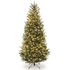 buy pre lit real trees from bed bath beyond