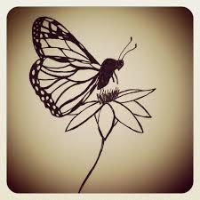 monarch butterfly drawings in pencil