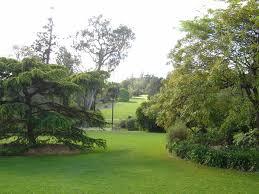 royal botanic gardens melbourne wallpaper