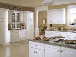 kitchen examples of painted kitchen cabinets kitchen cabinets