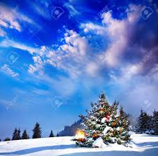 christmas tree with lights in mountain snow forest at dramatic