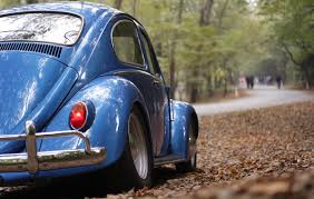 Blue Volkswagen Beetle Vintage Car Surrounded By Dry Leaves During