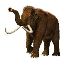 russian lab plans bring woolly mammoths