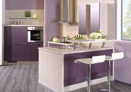 cuisine pourpre cuisine pourpre pas cher sur 2017 et cuisine équipée violet des