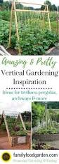 amazing vertical gardening ideas gardens vegetable garden and