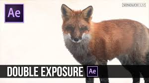 tutorial double exposure video after effects tutorial double exposure animation after effects