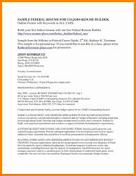 Federal Resume Cover Letter Examples Of Resume Titles