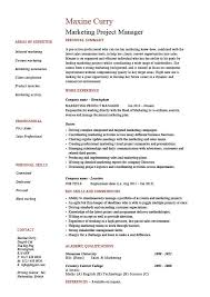 professional marketing resume marketing project manager resume drumming up business sle