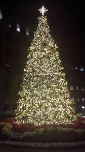 Singing Christmas Tree Lights 115 Best Lights Lights And More Lights Images On Pinterest