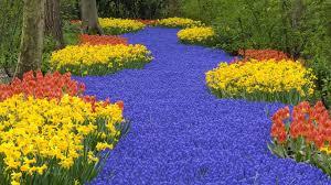 amazing flower garden walldevil