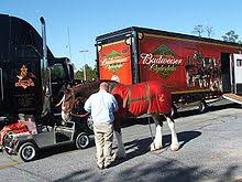 Budweiser Clydesdale Barn Budweiser Clydesdales Wikipedia