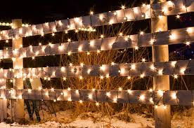 what are fairy lights solar powered christmas lights are exactly what you need in your yard