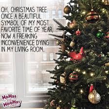 Christmas Tree Meme - christmas tree meme hahas for hoohas
