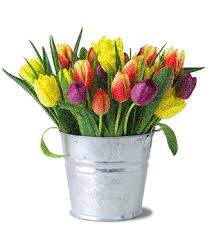 Images Of Tulip Flowers - flowers animation images animated colorful tulip flowers