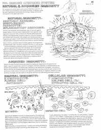 98 best coloring pages for biology images on pinterest human