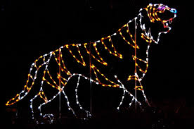 Zoo Light Dc by Bilbo From California A Visual Diary December 2011