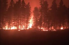 Wildfire Training Bc by 100m For Cities Devastated By B C Wildfires Castlegar News