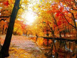 autumn river nature hd wallpaper 10374