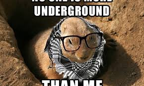 Groundhog Meme - 10 groundhog day memes that celebrate the ridiculousness of this