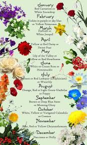 flower of the month birth flowers for each month pictures best 25 birth month meanings