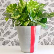 Ikea Flower Vase 22 Ikea Hacks For The Plants In Your Life Brit Co