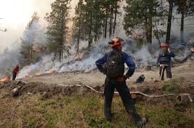 Wildfire Suppression Equipment by B C Wildfires 2017 Archives Surrey Now Leader