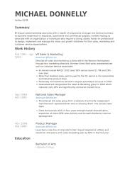 Sales And Marketing Resume Sample by Vp Sales U0026 Marketing Resume Samples Visualcv Resume Samples Database