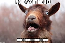 I Hate Mondays Meme - mondays are stupid imgflip