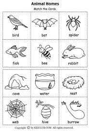 best 25 habitats ideas on pinterest animal habitats teaching