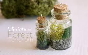 toni ellison miniature terrariums