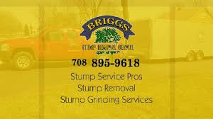 Business Cards For Tree Service Briggs Tree Services Tree Removal Tree Trimming Tree Care