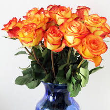 flowers direct fresh flowers direct from the volcano for any occasion plus a free
