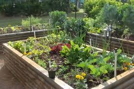 raised bed vegetable garden layout best garden reference
