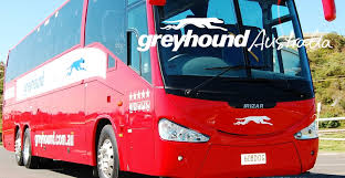 hop on hop sydney australia greyhound pass cairns to sydney 395 hop on hop