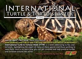 it u0027s international turtle u0026 tortoise week ttpg