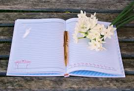 blank paper to write on free images notebook book creative white flower pen diary